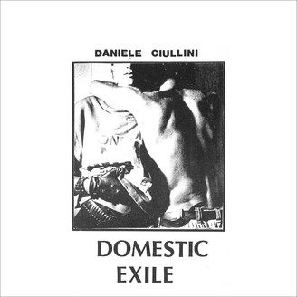 Domestic Exile Collected Works 82 - 86