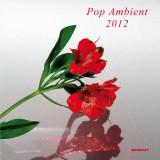 Pop Ambient 2012