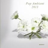 Pop Ambient 2013