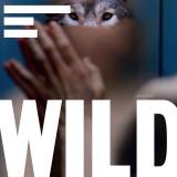 Wild Soundtrack