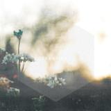 Transient EP